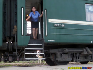 Trans siberian train and Stray dogs